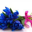 Blue tulips — Stock Photo #3822809