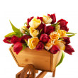Wooden wheelbarrow with tulips — Stock Photo