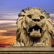 Budapest lion - Stock Photo
