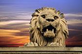 Budapest lion — Stock Photo