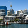 Darling Harbour Scene - Stock Photo