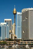 Darling Harbour Scene, Sydney, Australia — Stock Photo