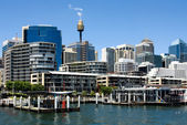 Darling Harbour Scene — Stockfoto
