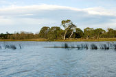 Wingecarribee River — Stockfoto
