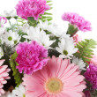 Pink and White Flowers — Stock Photo