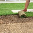 Laying sod for new lawn — Stockfoto #2793465