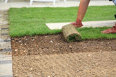Laying sod for new lawn — Stock fotografie