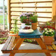 Terrace or roof gardening - Stock Photo