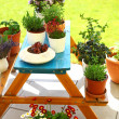 Stock Photo: Terrace or roof gardening