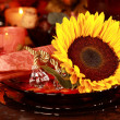Place setting for Thanksgiving — Foto Stock