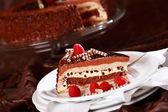 Delicious chocolate cake — Stock Photo