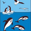 There are whale, penguins and seagulls — Stock Vector