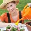 Young woman watering flowers — Stock Photo #2756536