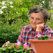 Senior woman - gardening — Stock Photo #3123226