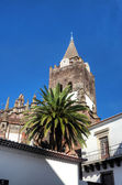 Se church in Funchal, Madeira, Portugal — Stock Photo