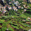 Village on the south coast of Madeira island, Camara de Lobos, Portugal - Stock Photo