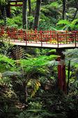 Monte Palace Tropical Garden — Stock Photo
