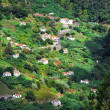 Village on the north coast of Madeira island - Stock Photo