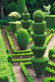 Decorative green park — Stock Photo