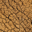 Cracked dry ground texture — Stock Photo