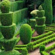 Decorative green park — Stock Photo
