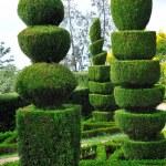 Decorative green park — Stock Photo #3558112