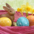 Easter nest — Foto Stock
