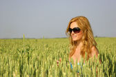 Beautiful sexy girl in a wheat field — Stock Photo