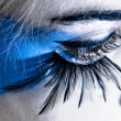 Stock Photo: Eye and eyelashes