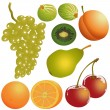 Set of fresh fruit — Stock Vector