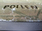 Pollen covered table — Stock Photo