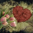 Grunge heart with tulips — Stock Photo