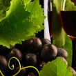 Stock Photo: Grapevine and red wine detail