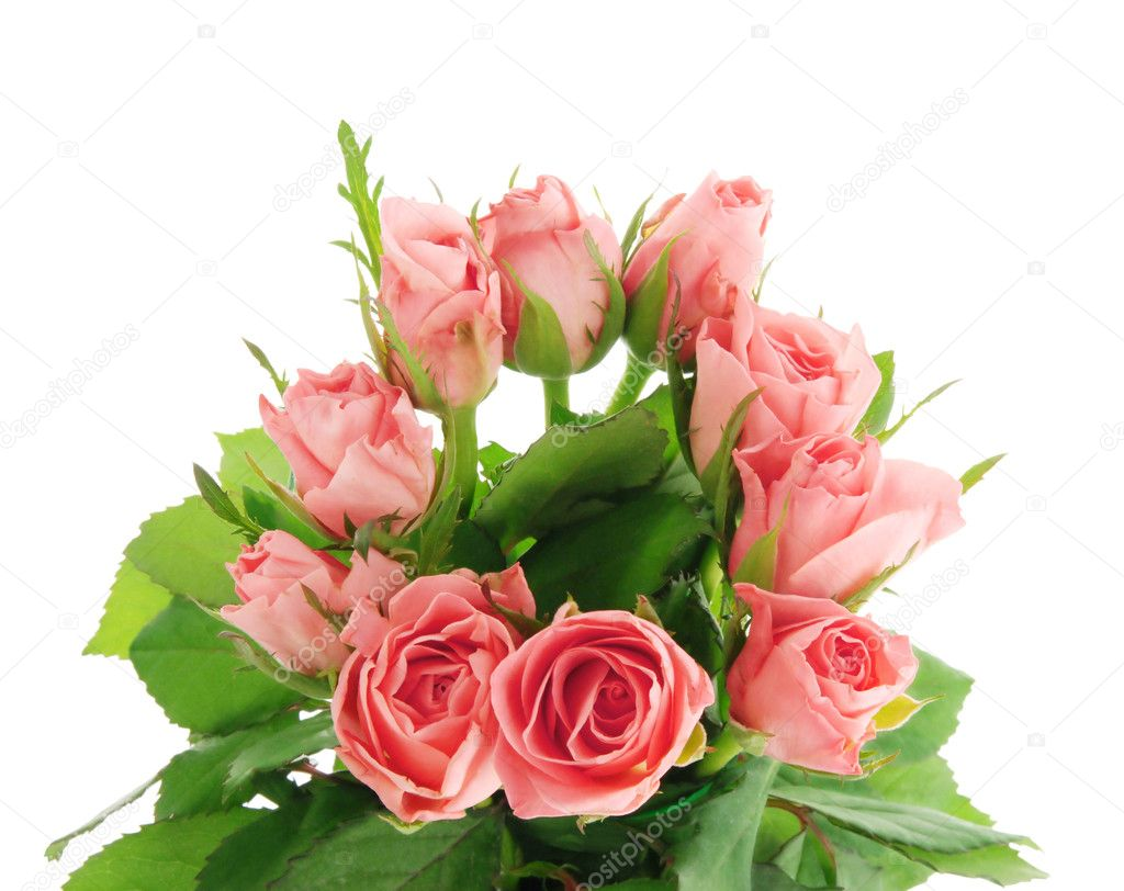 Romantic bouquet of roses, isolated on white background  Stock Photo #2814246