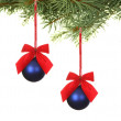 Branch with blue balls — Stock Photo