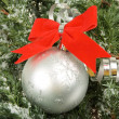 Branch with christmas ball — Stock Photo #3906878
