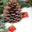 Pine branch with cone and gift boxes — Stock Photo