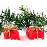 due Natale regalo bo — Foto Stock