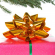 Stock Photo: Gift under christmas tree