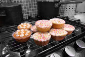 Domowe ciasta w piekarniku — Zdjęcie stockowe