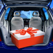 Red present in a car - Stock Photo
