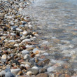Pebbly shore of red sea - Photo