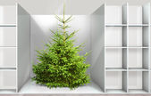 Christmas tree on the shelf — Stok fotoğraf