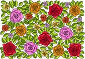 Rose — Vetorial Stock