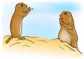 Prairie dog — Stock Vector