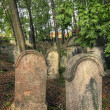 Jewish Cemetery — Stock Photo