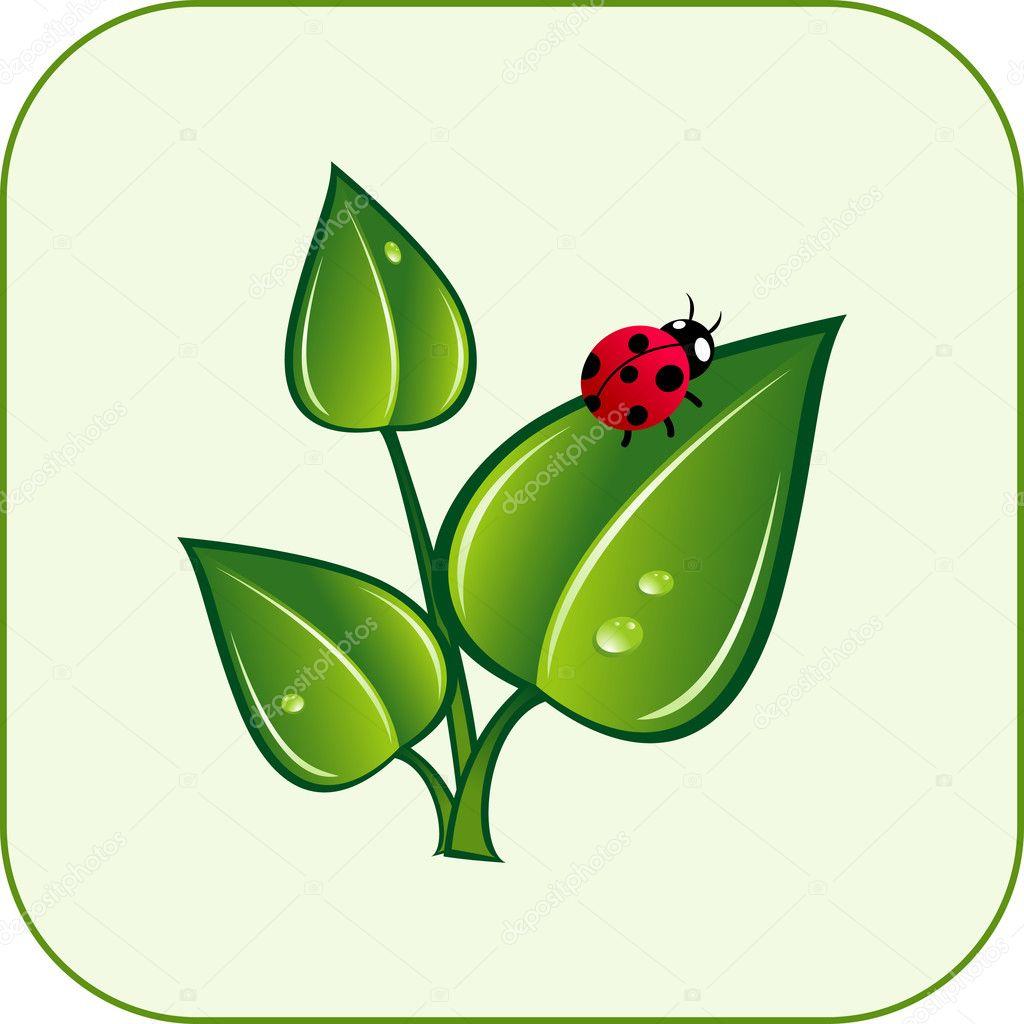 green ladybug clipart - photo #45