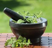 Stone mortar and pestle — Stock Photo