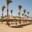 Stock Photo: Beach of Sharm el Sheik