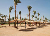 Beach of Sharm el Sheik — Stock Photo